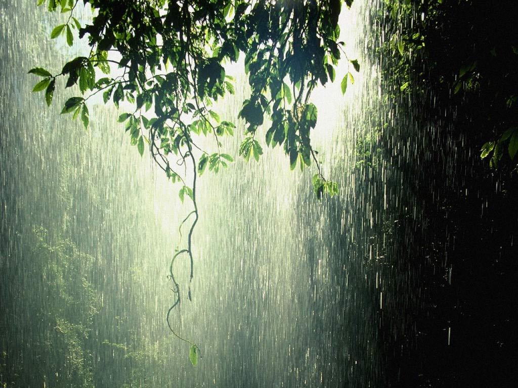 Hujan Itu Mengajarku